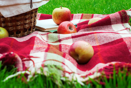 Apples Basket Fruit Checkered Plaid Picnic Grass